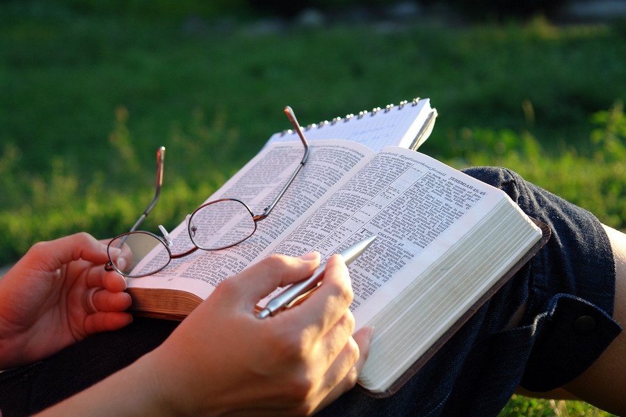 Why the Bible is Important for Literature Study