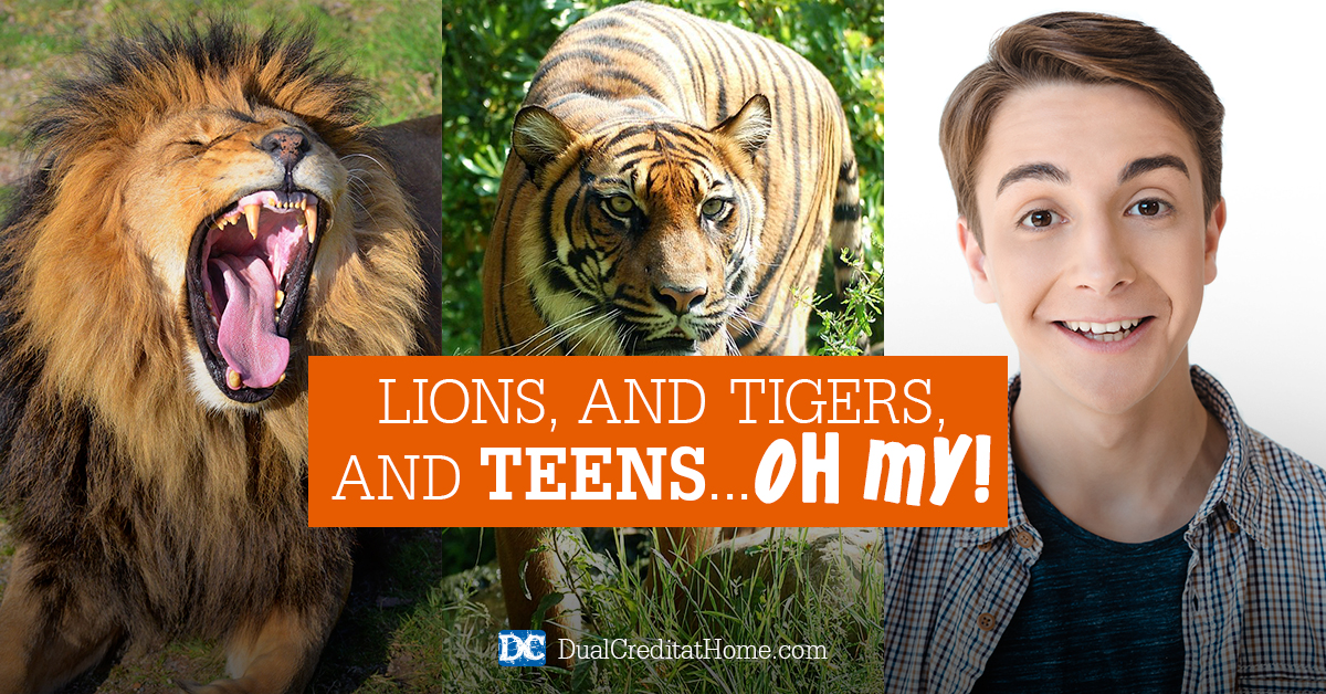 Lions, and Tigers, and… Teens, Oh My!